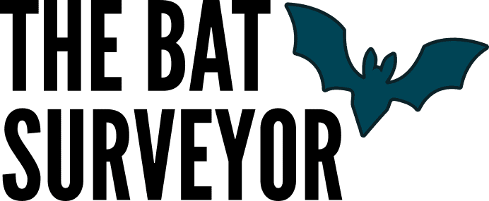 Bat Surveyor