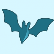 Bat Surveyor