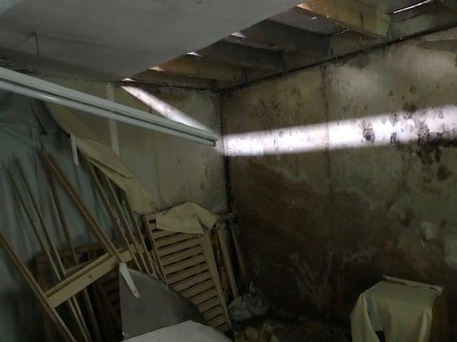Arundel Street Derby Bat Survey - inside warehouse 3