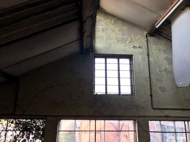 Arundel Street Derby Bat Survey - inside warehouse