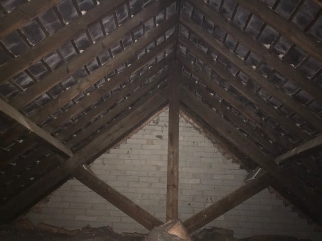 Belper Bat Survey - inside loft
