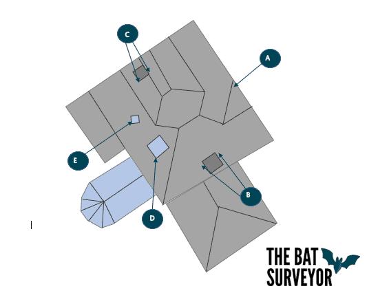 Bat Survey, Chellaston, Derbyshire